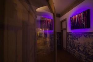 Jana Matejkova-Middleton&Rory Middleton, Her Silent Sonata, Palácio Belmonte, 2015-